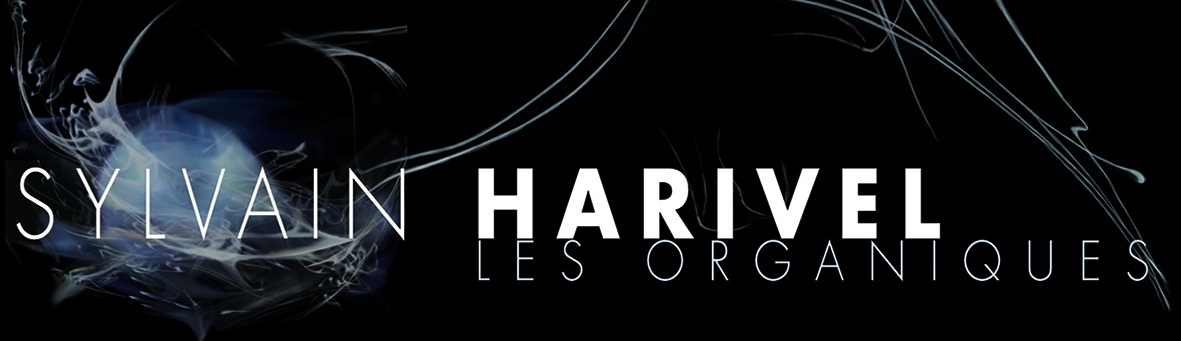 Sylvain Harivel